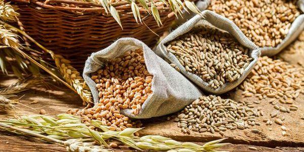 5 Super Cereales que debes incluir en tu dieta