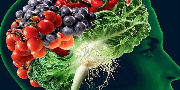 Los mejores alimentos y nutrientes para el cerebro