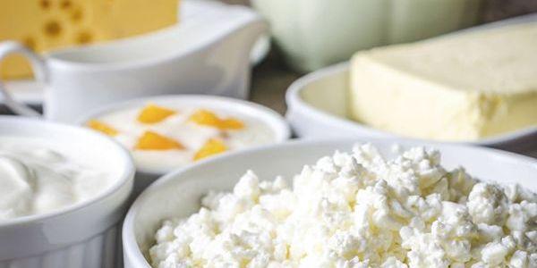 5 Principales productos lácteos ricos en grasa