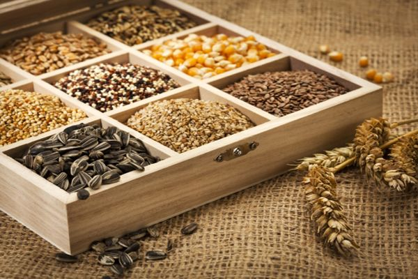 5 Semillas altas en proteínas para añadir a tu dieta