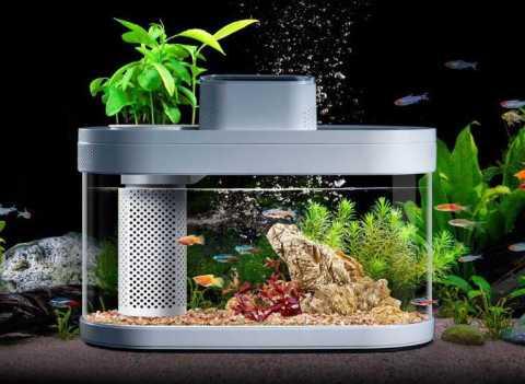 Xiaomi Geometry Fish Tank - Xiaomi Geometry Fish Tank Banggood Coupon Promo Code