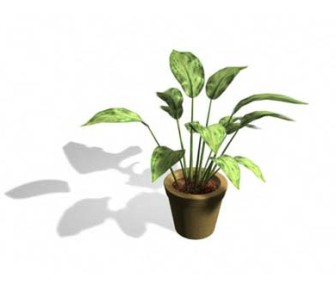 Plants in House 3D Max Model