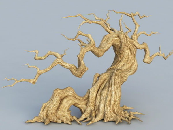 Old Withered Tree