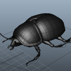 Black Lawn Beetle Rig Character