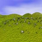 المناظر الطبيعية الخضراء والتلال والجبال
