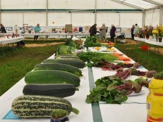 Hodder-Valley-Vegetables