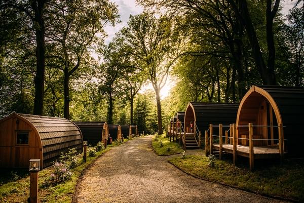 Browsholme Hall woodland