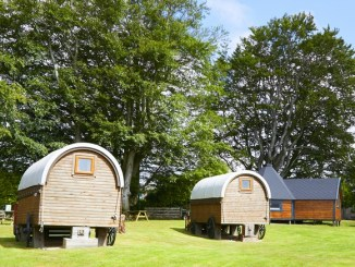 Huts at Pinewood Park