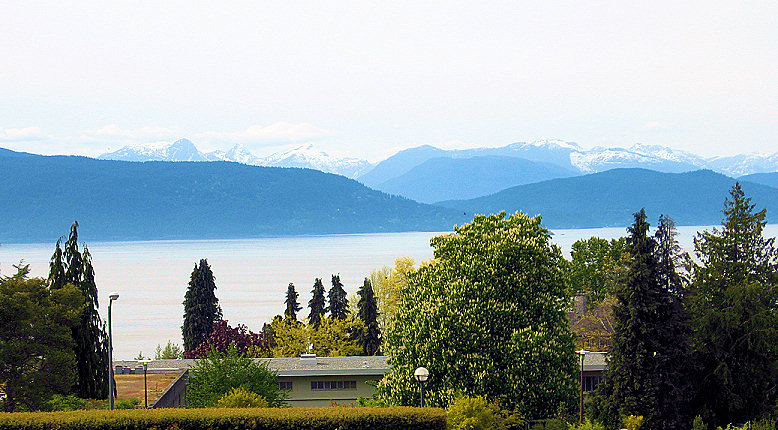 A view from the University of British Columbia