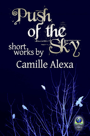PUSH OF THE SKY BY CAMILLE ALEXA: EBOOK GIVEAWAY
