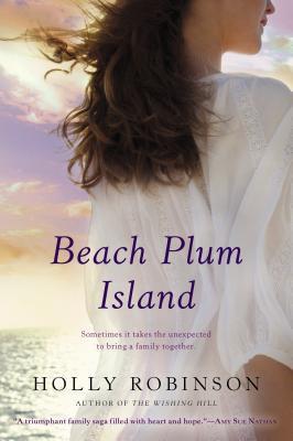 BEACH PLUM ISLAND BY HOLLY ROBINSON: BOOK REVIEW