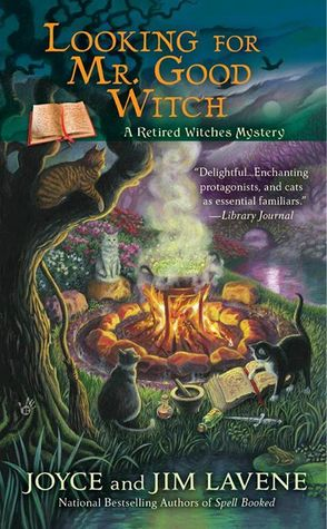 Looking-for-Mr.-Good-Witch
