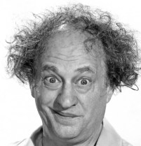Picture Source: https://medium.com/@jeremylr/caught-in-the-middle-author-steve-cox-salutes-lovable-three-stooges-porcupine-larry-fine-416f4184fd2c