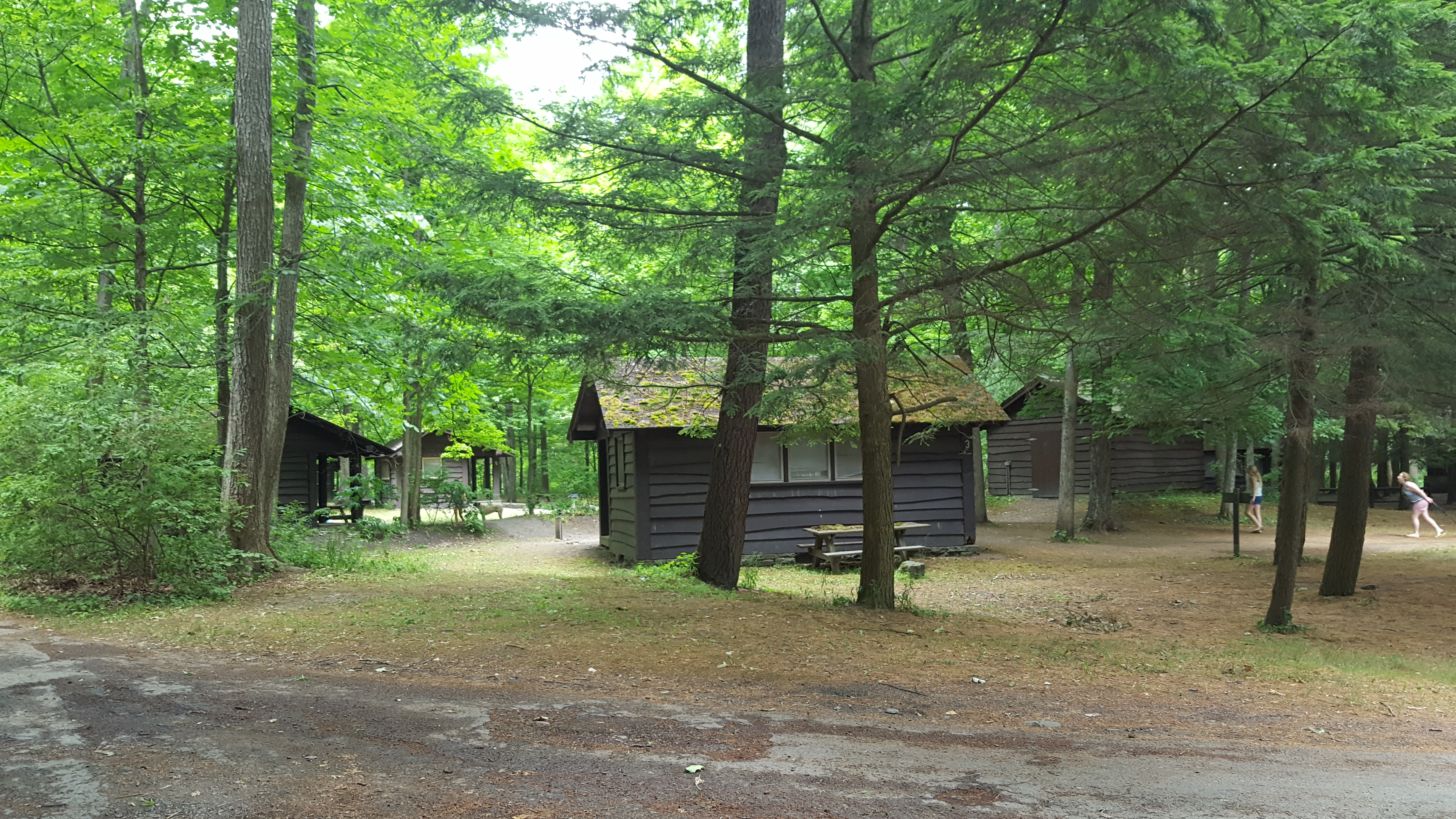 Robert H Treman State Park Ithaca Ny Open Box Reviews