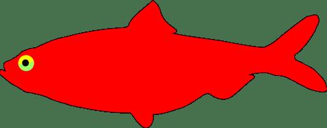 Red Herring by algotruneman