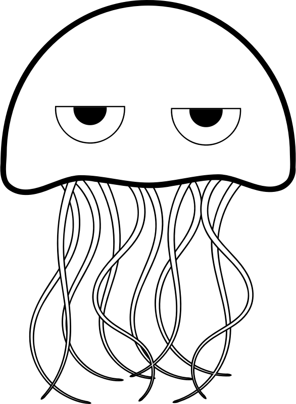 box jelly fish colouring pages page 2