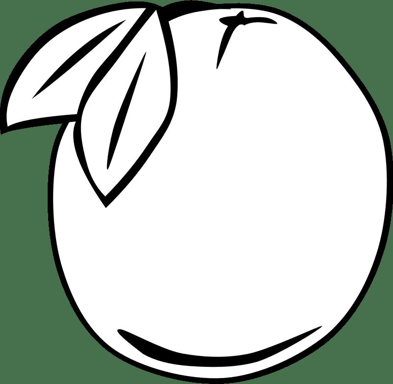 clipart simple fruit orange