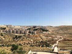 Muskathlon in the Middle East