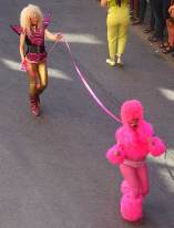 Pink-dog