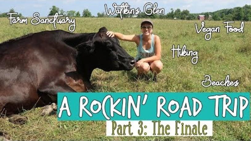 Farm Sanctuary Watkins Glen Reviews