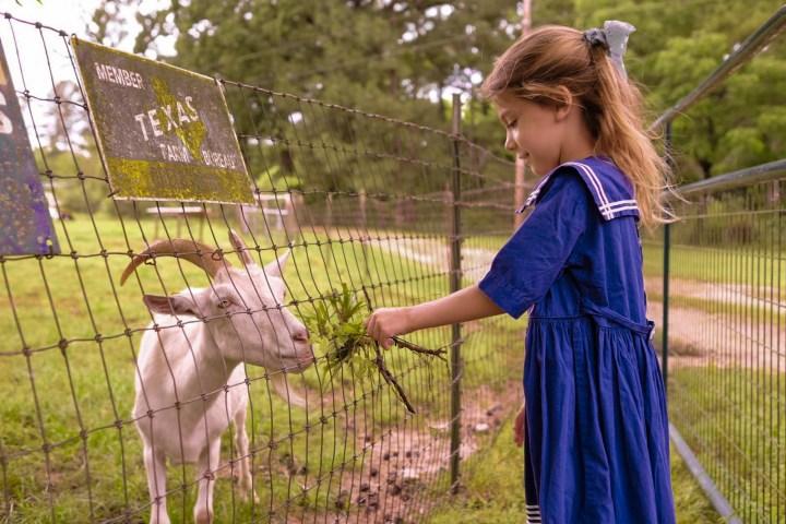 greer farm review