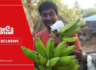 the-programmer-who-became-a-natural-farmer-3-lakh-income