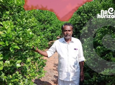 18-lakh-in-natural-agriculture-winning-andhra- farmer