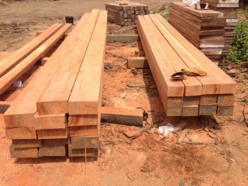 Wood business ideas, sawmill