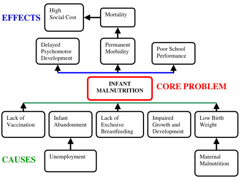 Problem tree for infant malnutrition from Participatory