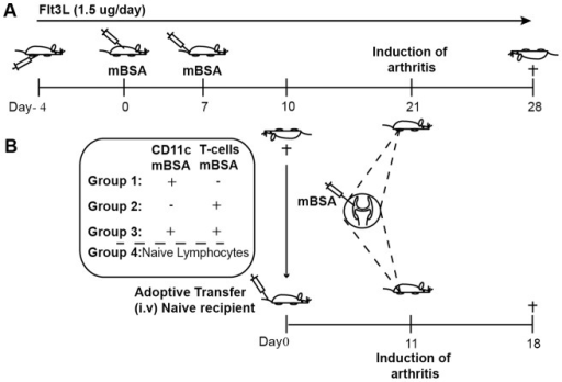 Schematic Picture Of The Mbsa Model Of Antigen Induced