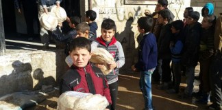 siria forno