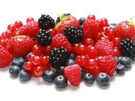 Piccoli frutti: curiosità e come coltivarli nei nostri giardini