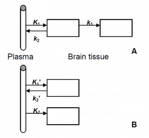 Figure 5. Two different layouts for the two-tissue compartment model for the description of irreversible uptake: (A) a sequential structure and (B) a parallel structure.