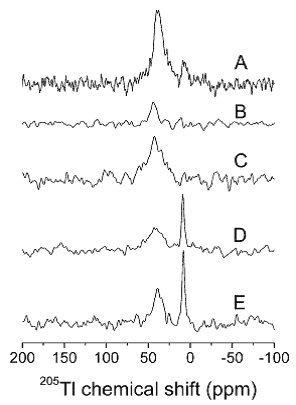 Figure 27 shows the thallium-205 MAS NMR spectra of thallium cation interacting with sodium ions and potassium ATPase from shark rectal glands.