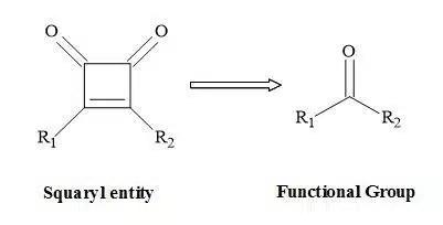 Figure 1. Squaryl molecular metaphors.