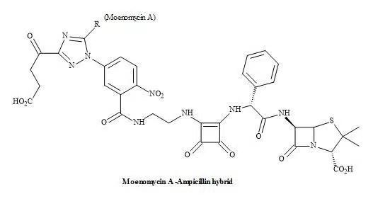 Figure 59. Squaramide hybrid antibiotic