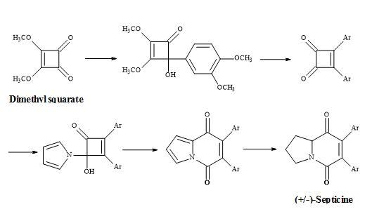 Figure 8. Synthesis of (±)-septicine