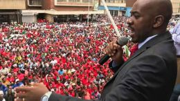 Chamisa, ED are more powerful than their parties