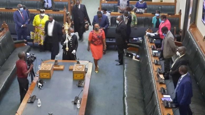 President Mnangagwa's full speech (SONA)