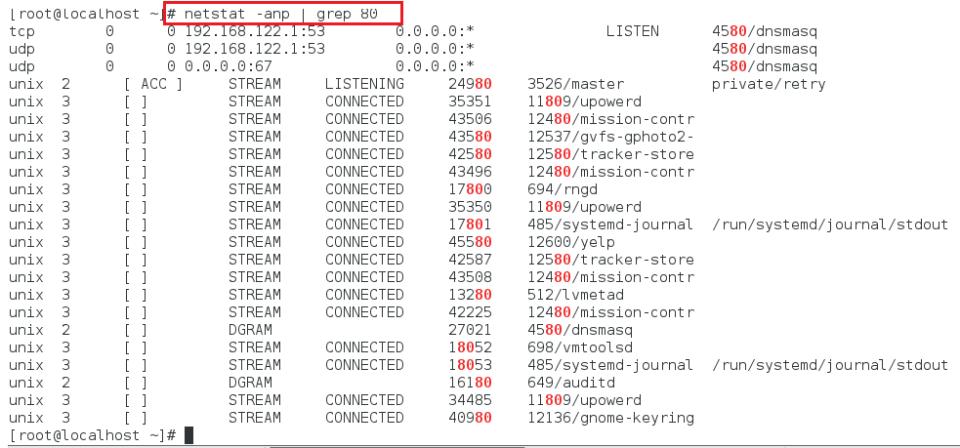 Netstat linux open port