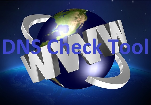 DNS Check Tool