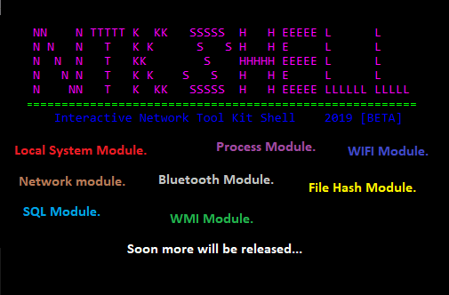 NTKShell an Interactive Network Tool Kit Shell.