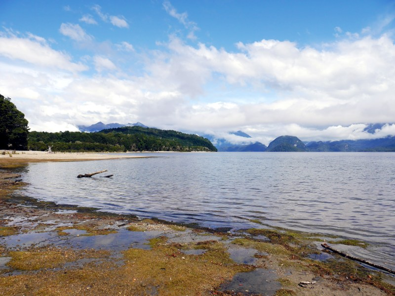 The Shores of Lake Manapouri