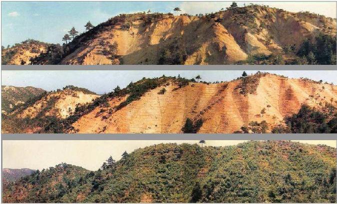 Soil Erosion Project