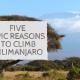 Reasons to Climb Kilimanjaro