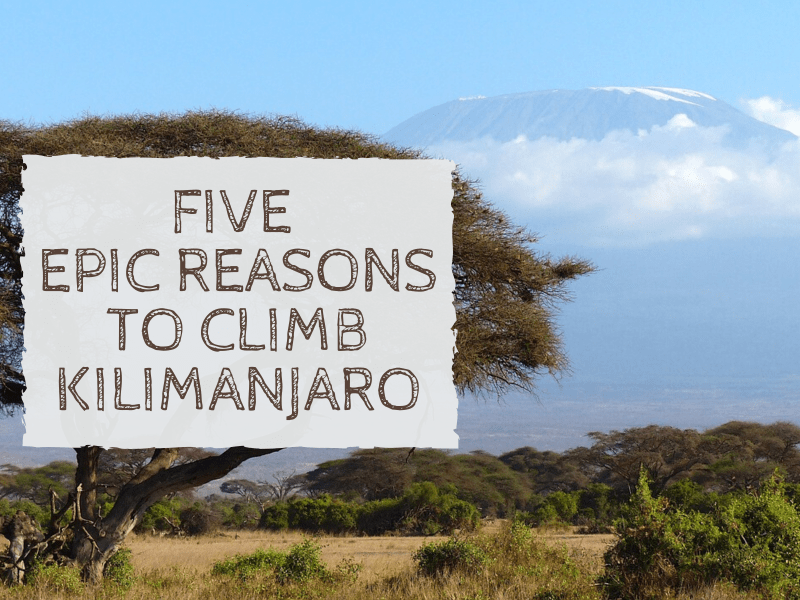 Reasons to Climb Kilimanjaro