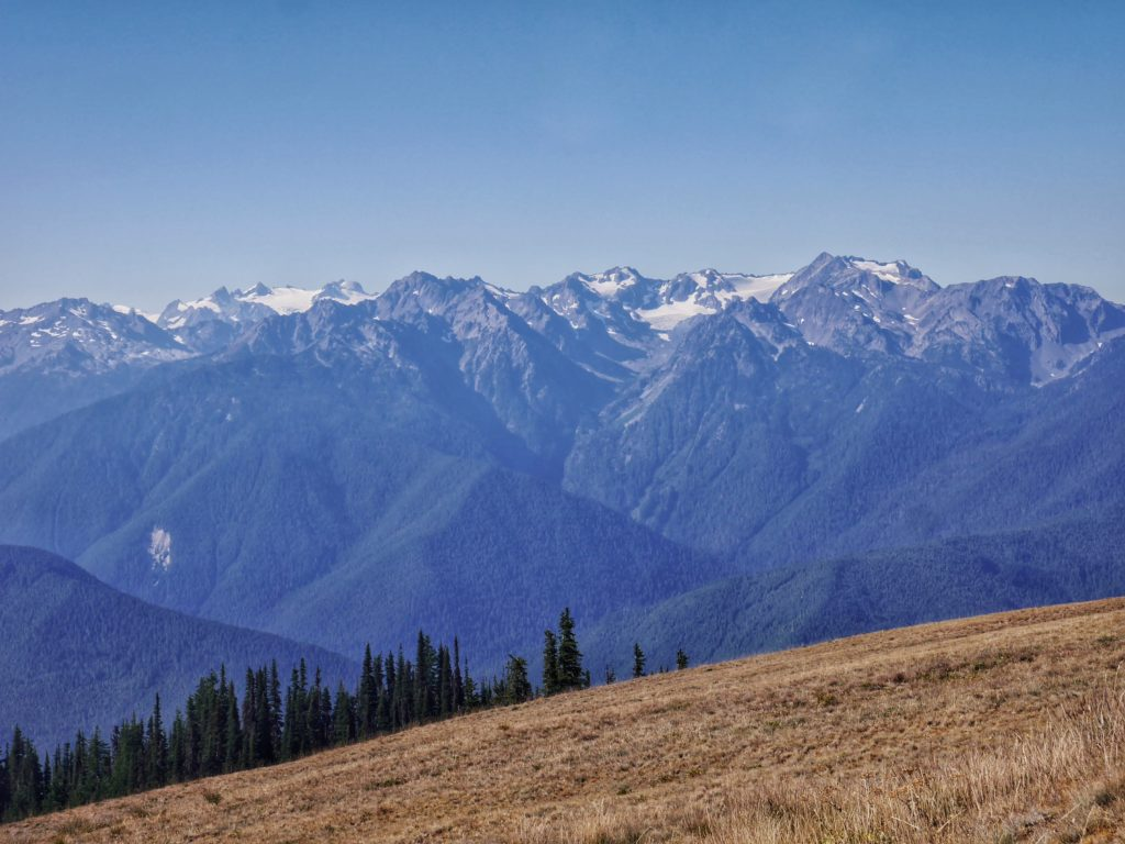 View from Hurricane Ridge in Olympic National Park