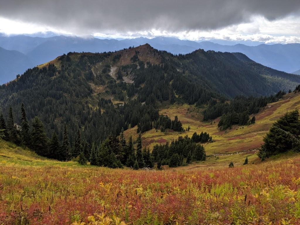 Green Mountain Meadows