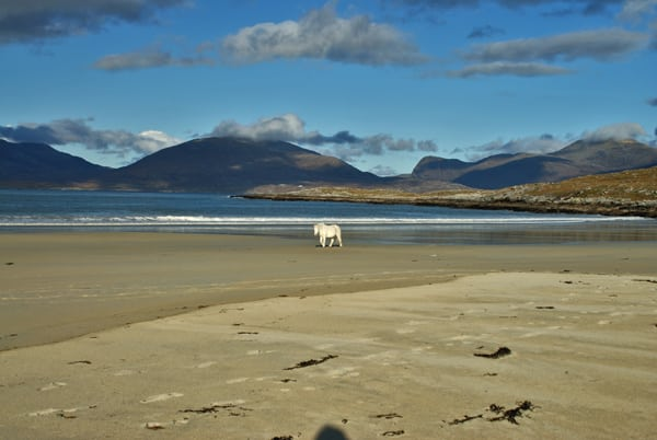 Luskentyre beach, Harris. Pic credit: Virtual Heb