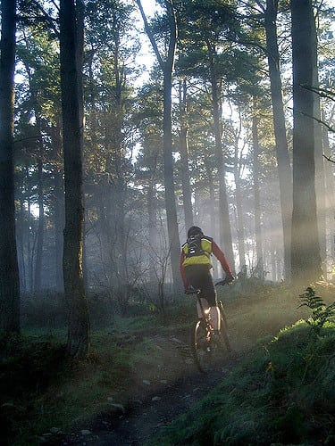 Stunning mountain biking trails of Glentress. Pic credit: Addy.